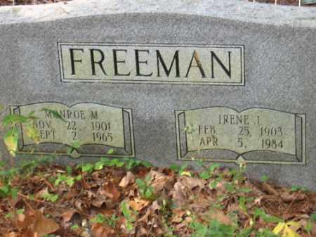FREEMAN, IRENE J - Pulaski County, Arkansas | IRENE J FREEMAN - Arkansas Gravestone Photos