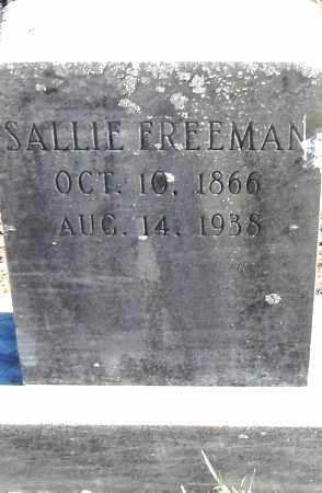 FREEMAN, SALLIE - Pulaski County, Arkansas   SALLIE FREEMAN - Arkansas Gravestone Photos