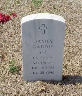 GADDIE (VETERAN VIET), JAMES - Pulaski County, Arkansas | JAMES GADDIE (VETERAN VIET) - Arkansas Gravestone Photos