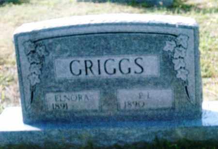 GRIGGS, ELNORA - Pulaski County, Arkansas | ELNORA GRIGGS - Arkansas Gravestone Photos