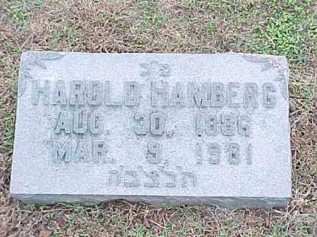 HAMBERG, HAROLD - Pulaski County, Arkansas | HAROLD HAMBERG - Arkansas Gravestone Photos