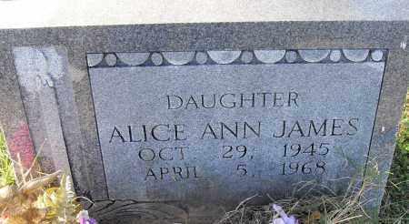 JAMES, ALICE ANN - Pulaski County, Arkansas | ALICE ANN JAMES - Arkansas Gravestone Photos