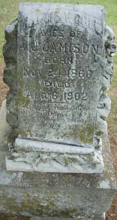 COLE JAMISON, MATTIE V. - Pulaski County, Arkansas | MATTIE V. COLE JAMISON - Arkansas Gravestone Photos