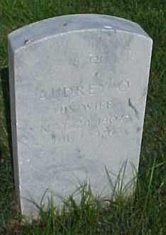 JOHNSON, AUDREY O - Pulaski County, Arkansas | AUDREY O JOHNSON - Arkansas Gravestone Photos