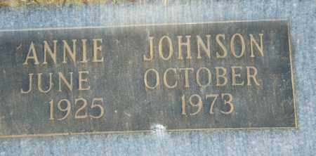 JOHNSON, ANNIE - Pulaski County, Arkansas | ANNIE JOHNSON - Arkansas Gravestone Photos