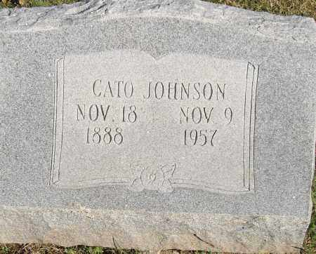 JOHNSON, CATO - Pulaski County, Arkansas | CATO JOHNSON - Arkansas Gravestone Photos