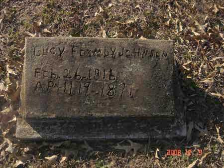 FORNBY JOHNSON, LUCY - Pulaski County, Arkansas | LUCY FORNBY JOHNSON - Arkansas Gravestone Photos