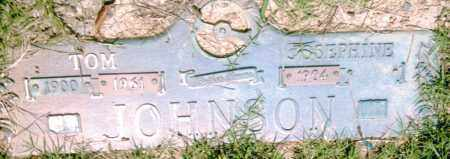 JOHNSON, JOSEPHINE - Pulaski County, Arkansas | JOSEPHINE JOHNSON - Arkansas Gravestone Photos