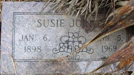 JOINTER, SUSIE - Pulaski County, Arkansas | SUSIE JOINTER - Arkansas Gravestone Photos