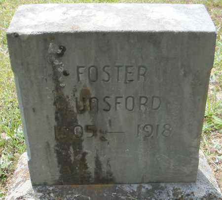 LUNSFORD, FOSTER - Pulaski County, Arkansas   FOSTER LUNSFORD - Arkansas Gravestone Photos