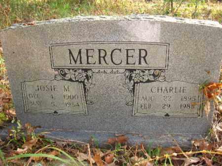 MERCER, CHARLIE - Pulaski County, Arkansas   CHARLIE MERCER - Arkansas Gravestone Photos