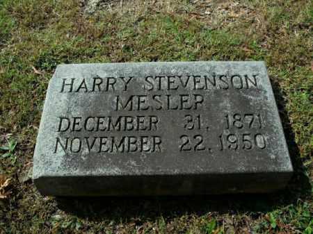 MESLER, HARRY STEVENSON - Pulaski County, Arkansas | HARRY STEVENSON MESLER - Arkansas Gravestone Photos