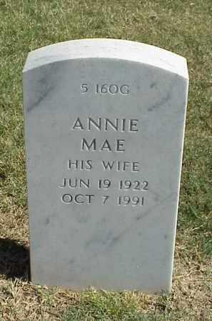 MITCHELL, ANNIE MAE - Pulaski County, Arkansas | ANNIE MAE MITCHELL - Arkansas Gravestone Photos