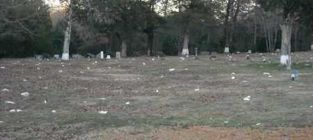 *MOUNT VALLEY CEMETERY,  - Pulaski County, Arkansas |  *MOUNT VALLEY CEMETERY - Arkansas Gravestone Photos