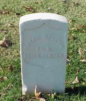 NELLUM (VETERAN UNION), ABRAM - Pulaski County, Arkansas | ABRAM NELLUM (VETERAN UNION) - Arkansas Gravestone Photos