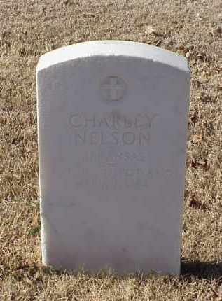 NELSON (VETERAN WWI), CHARLEY - Pulaski County, Arkansas   CHARLEY NELSON (VETERAN WWI) - Arkansas Gravestone Photos