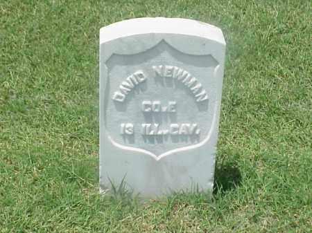 NEWMAN (VETERAN UNION), DAVID - Pulaski County, Arkansas   DAVID NEWMAN (VETERAN UNION) - Arkansas Gravestone Photos