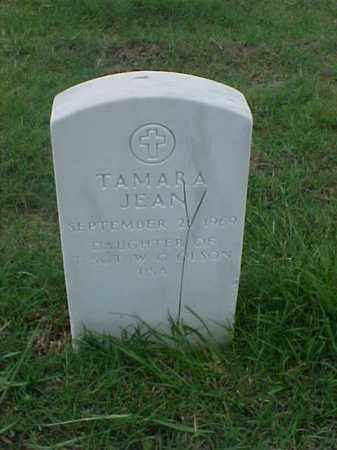 OLSON, TAMARA JEAN - Pulaski County, Arkansas | TAMARA JEAN OLSON - Arkansas Gravestone Photos