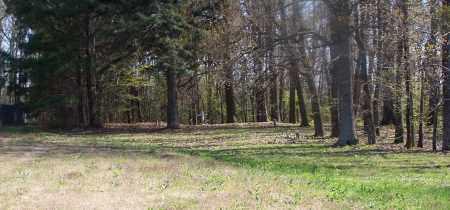 *BETHANY OVERVIEW,  - Pulaski County, Arkansas    *BETHANY OVERVIEW - Arkansas Gravestone Photos