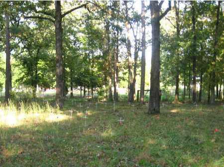 *PALESTINE CEMETERY, UNMARKED GRAVES - Pulaski County, Arkansas | UNMARKED GRAVES *PALESTINE CEMETERY - Arkansas Gravestone Photos