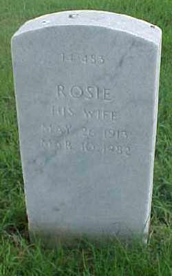 PARKER, ROSIE - Pulaski County, Arkansas | ROSIE PARKER - Arkansas Gravestone Photos