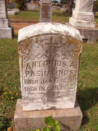 PASHALINOS, ANTONIOS A - Pulaski County, Arkansas | ANTONIOS A PASHALINOS - Arkansas Gravestone Photos