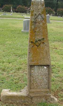 PROCTOR, EMMA - Pulaski County, Arkansas   EMMA PROCTOR - Arkansas Gravestone Photos