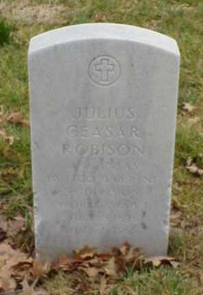 ROBISON  (VETERAN WWI), JULIUS CEASAR - Pulaski County, Arkansas | JULIUS CEASAR ROBISON  (VETERAN WWI) - Arkansas Gravestone Photos