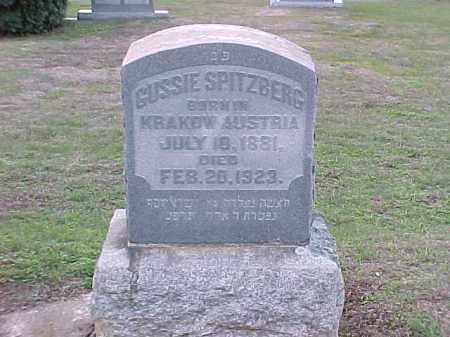 SPITZBERG, GUSSIE - Pulaski County, Arkansas | GUSSIE SPITZBERG - Arkansas Gravestone Photos