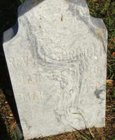 SPRINGER, REV., H. L. - Pulaski County, Arkansas   H. L. SPRINGER, REV. - Arkansas Gravestone Photos