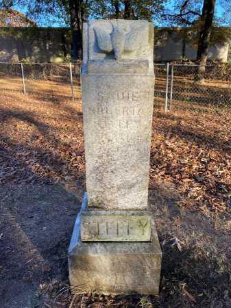 STEFFY, SADIE ROBERTA - Pulaski County, Arkansas | SADIE ROBERTA STEFFY - Arkansas Gravestone Photos