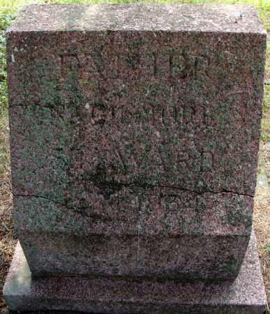 STEWARD, N. GILMORE - Pulaski County, Arkansas | N. GILMORE STEWARD - Arkansas Gravestone Photos