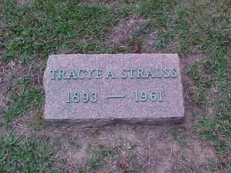STRAUSS, TRACYE A - Pulaski County, Arkansas | TRACYE A STRAUSS - Arkansas Gravestone Photos
