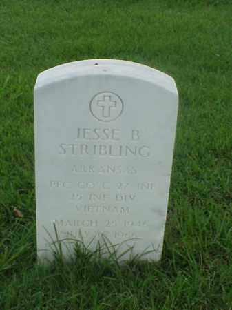 STRIBLING (VETERAN VIET), JESSE B - Pulaski County, Arkansas   JESSE B STRIBLING (VETERAN VIET) - Arkansas Gravestone Photos
