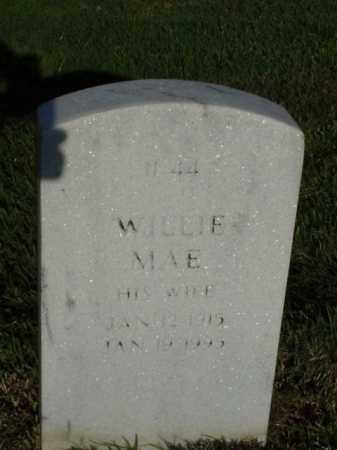 SUTTON, WILLIE MAE - Pulaski County, Arkansas | WILLIE MAE SUTTON - Arkansas Gravestone Photos
