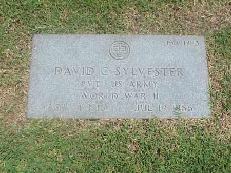 SYLVESTER (VETERAN WWII), DAVID C - Pulaski County, Arkansas | DAVID C SYLVESTER (VETERAN WWII) - Arkansas Gravestone Photos