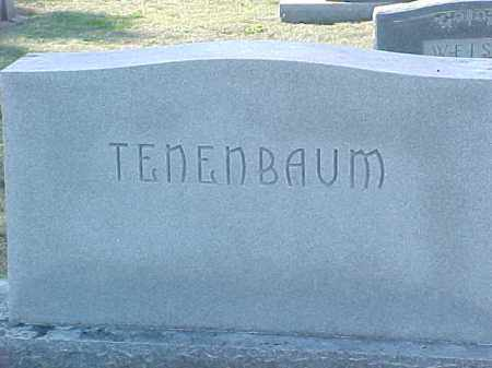 TENENBAUM FAMILY STONE,  - Pulaski County, Arkansas |  TENENBAUM FAMILY STONE - Arkansas Gravestone Photos