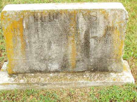 THOMAS, BETTIE - Pulaski County, Arkansas | BETTIE THOMAS - Arkansas Gravestone Photos
