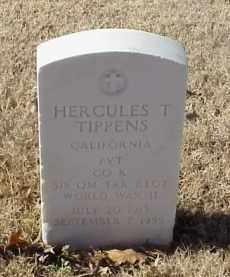 TIPPENS (VETERAN WWII), HERCULES T - Pulaski County, Arkansas | HERCULES T TIPPENS (VETERAN WWII) - Arkansas Gravestone Photos