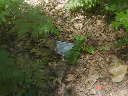UNKNOWN, UNKNOWN - Pulaski County, Arkansas   UNKNOWN UNKNOWN - Arkansas Gravestone Photos