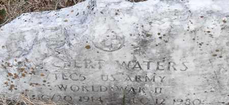 WATERS (VETERAN WWII), _LBERT - Pulaski County, Arkansas | _LBERT WATERS (VETERAN WWII) - Arkansas Gravestone Photos
