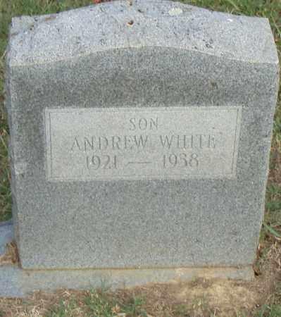 WHITE, ANDREW - Pulaski County, Arkansas | ANDREW WHITE - Arkansas Gravestone Photos