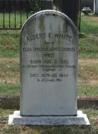 WHITE, ALBERT E. - Pulaski County, Arkansas | ALBERT E. WHITE - Arkansas Gravestone Photos