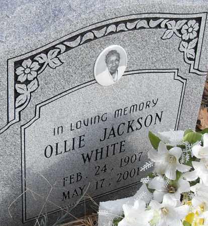 WHITE, OLLIE - Pulaski County, Arkansas   OLLIE WHITE - Arkansas Gravestone Photos