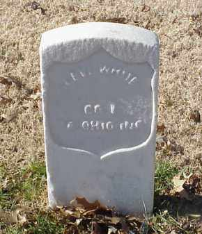 WHITE (VETERAN UNION), LEVI - Pulaski County, Arkansas | LEVI WHITE (VETERAN UNION) - Arkansas Gravestone Photos