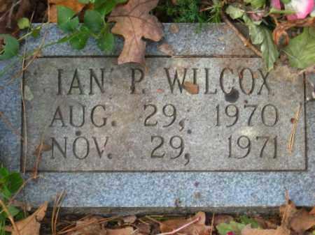 WILCOX, IAN P - Pulaski County, Arkansas | IAN P WILCOX - Arkansas Gravestone Photos
