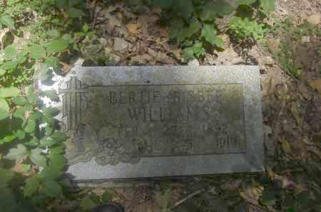 WILLIAMS, BERTIE - Pulaski County, Arkansas | BERTIE WILLIAMS - Arkansas Gravestone Photos