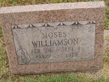 WILLIAMSON, MOSES - Pulaski County, Arkansas | MOSES WILLIAMSON - Arkansas Gravestone Photos