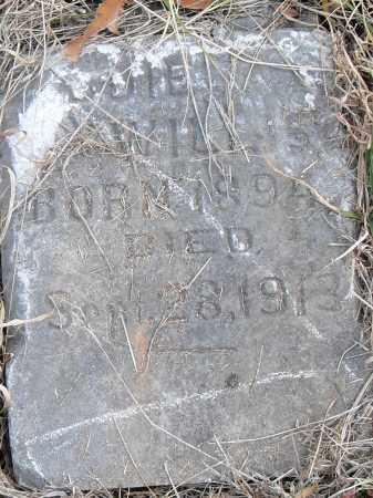 WILLIS, -DDIE - Pulaski County, Arkansas | -DDIE WILLIS - Arkansas Gravestone Photos