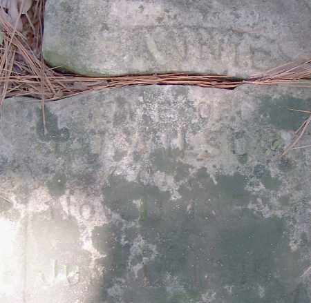 WILSON, ANNIE - Pulaski County, Arkansas   ANNIE WILSON - Arkansas Gravestone Photos